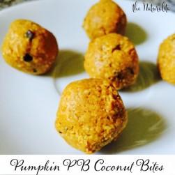 Pumpkin Peanut Butter Coconut Bites