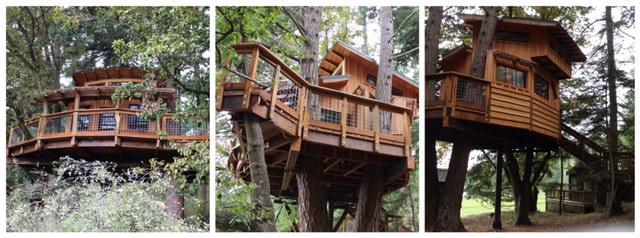 Treehouse Views!  www.naturalita.com/blog