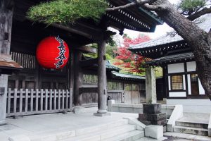 Kamkura, travel, Japan, gluten free travel, Health Coach travel, Shrine
