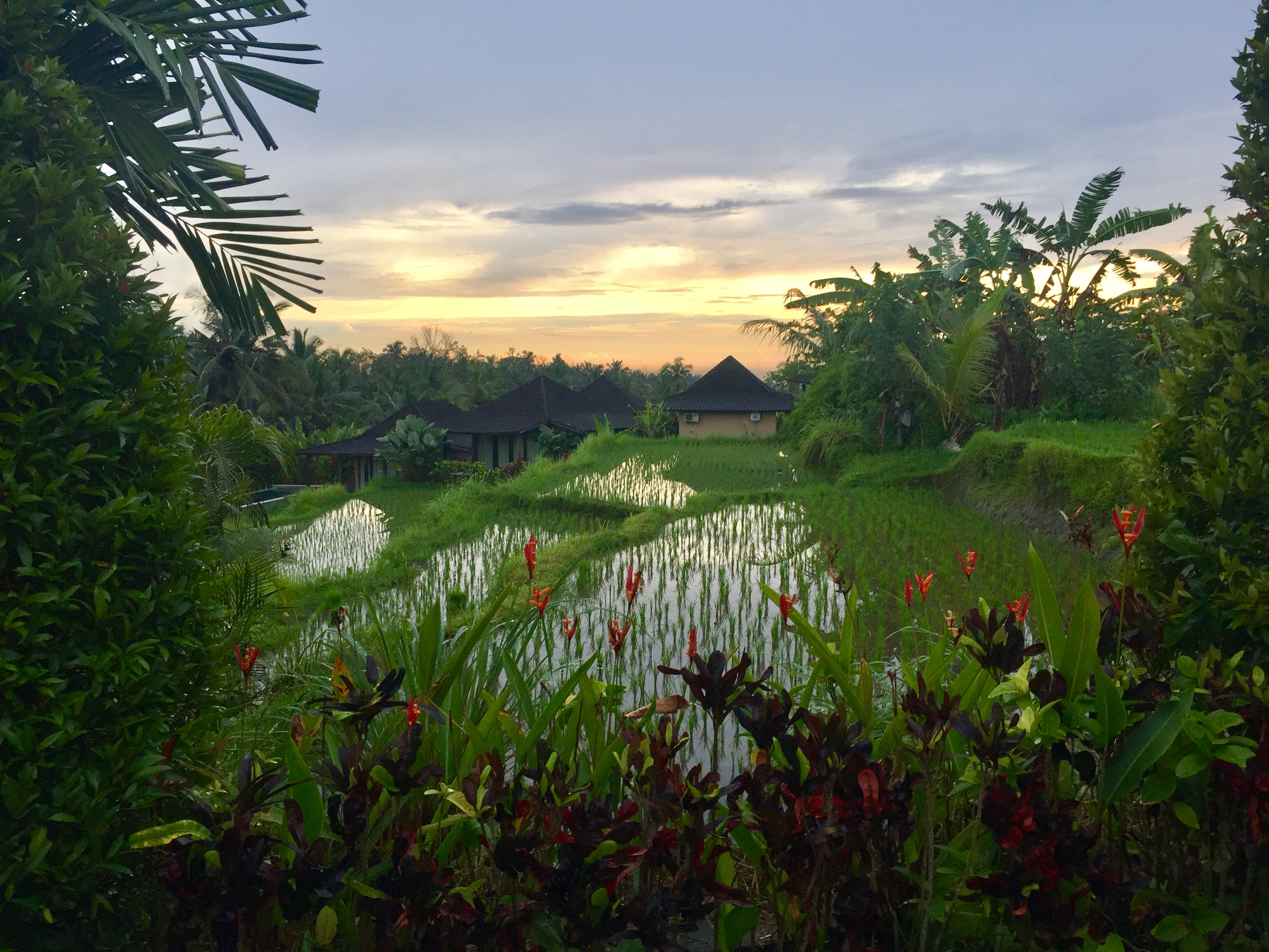 Bali Yoga Teacher Training Beginnings